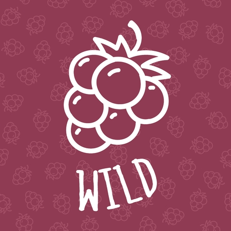 wildberry: Seamless background with hand draw blackberry