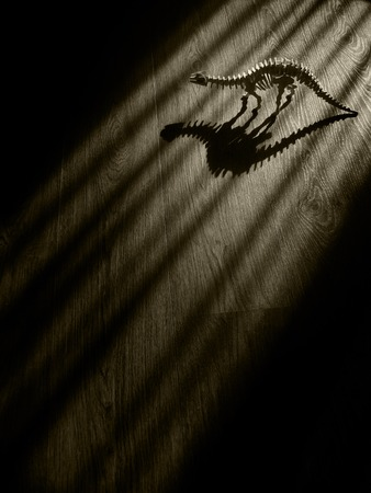 Scary Dinosaur Skeleton long shadows in dark room