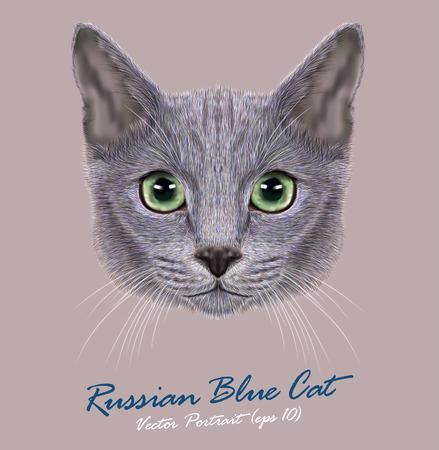 국내 고양이의 벡터 초상화. 러시아 블루 고양이. 녹색 눈을 가진 귀여운 어린 고양이