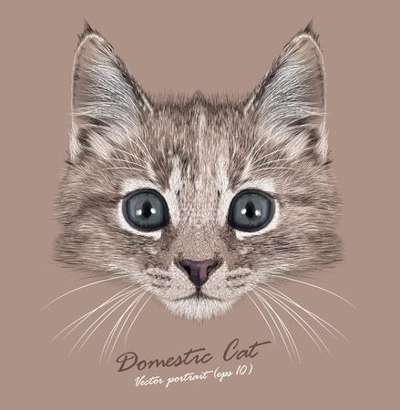 Vector Portrait of Domestic Kitten. Cute tortoise colour kitten female. Vettoriali