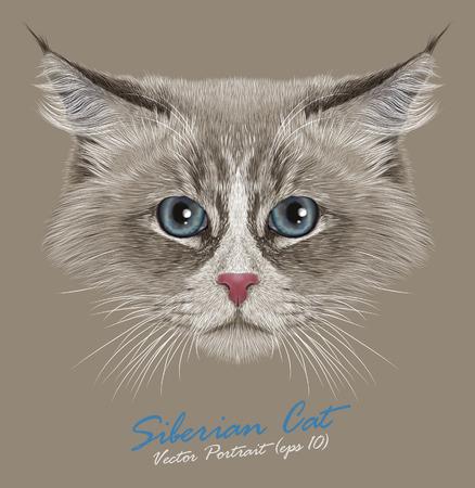 Vector Portrait of Siberian Cat. Cute Young Domestic Cat. Neva Masquerade Cat Color-point.