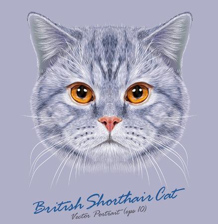Vector Portrait of British Short-hair Cat. Cute grey domestic cat with orange eyes. Stock Illustratie