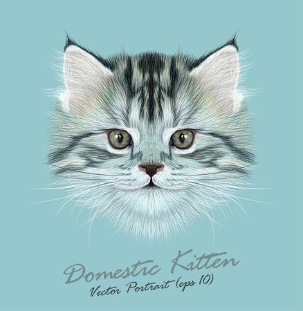Vector Illustrative Portrait of Domestic Kitten. Cute grey tabby kitten.