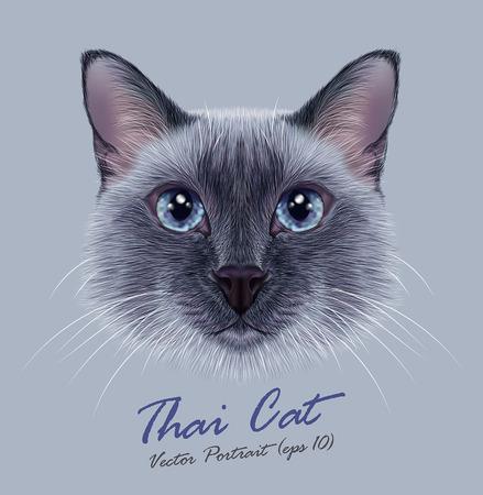 タイ猫のベクター イラスト肖像画。かわいいブルー ポイント伝統的なシャム猫。