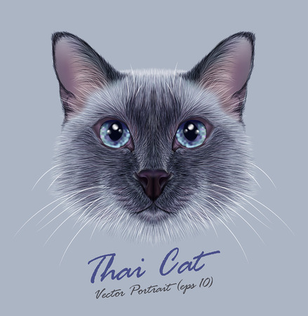 Vector Illustrative Portrait of a Thai Cat. Cute blue point Traditional Siamese Cat. Ilustração