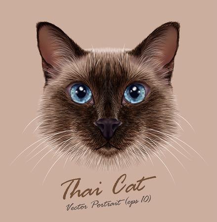 gato dibujo: Vector ilustrativa Retrato de un gato tailandés. Punto del sello lindo gato siamés tradicional.