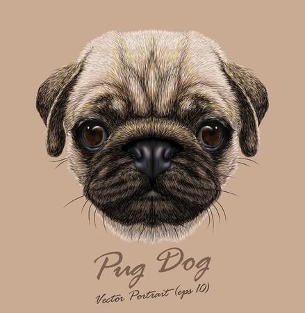 Portrait de vecteur de chien carlin. Mignon jeune chien. Banque d'images - 44304488