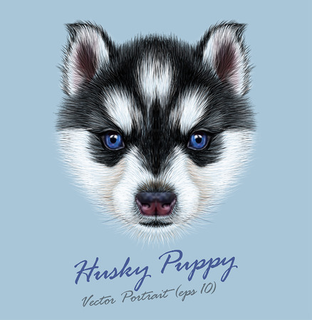 Vector Illustrative Portrait of a Husky Puppy. Cute head of bicolor puppy with blue eyes. Illustration