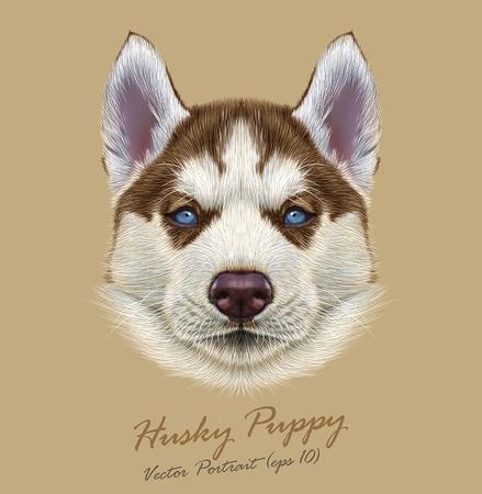 ハスキーの子犬のベクトル イラスト肖像画。淡いブルーの目を持つ若い銅赤い二色犬のかわいい肖像画。  イラスト・ベクター素材