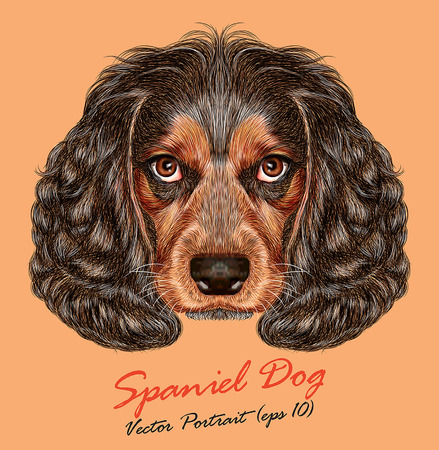 cavalier: Vector Portrait of Spaniel Dog. Cute young Russian hunting spaniel.