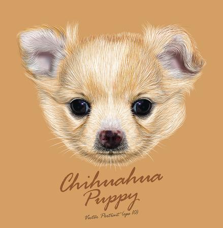 Vector Illustratief Portret van Chihuahua pup. Schattige witte puppy met abrikoos vlekken op de huid.