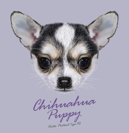 치와와 강아지의 벡터 일러스트 레이 예시 초상화. 귀여운 이중 색상 작은 강아지 검정, 흰색. 일러스트
