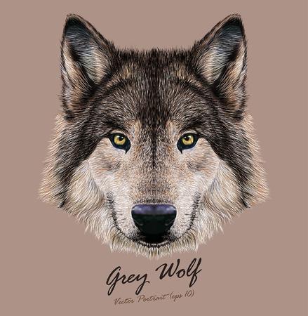Vector Ilustración Digital retrato de un lobo. Color de piel gris oscuro.