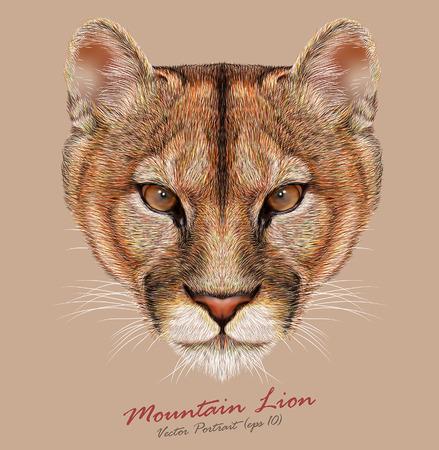Vector Portrait of a Mountain Lion. Cuguar Cat.