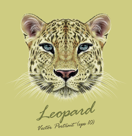 Vector Illustrative Portrait of Leopard. Cute face of African Leopard with blue eyes.