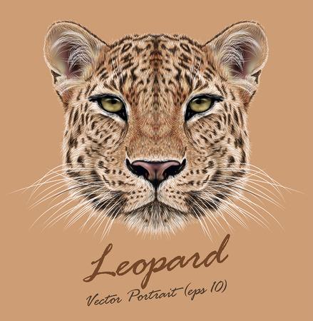 Vector Illustrative Portrait of Leopard. Cute face of African Leopard