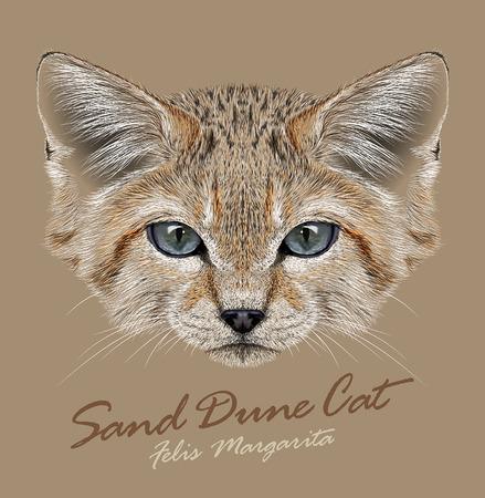 Vector Portrait Sand Dune Cats. Small Wild Cat living in the desert.