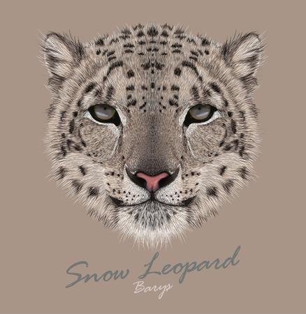 雪ヒョウのベクトルの肖像  イラスト・ベクター素材