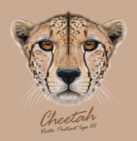 Vector Illustratief Portret van een Cheetah. Het leuke gezicht van een Cheetah. Stock Illustratie