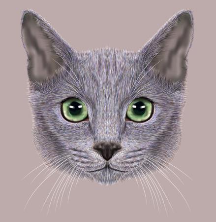ロシアの青猫の肖像画のイラスト。かわいい飼い猫 eith 緑目