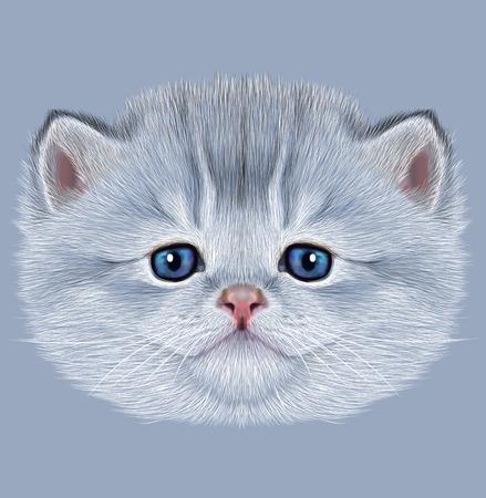kitty: Illustrative Portrait of Domestic Kitten. Cute silver kitten with blue eyes.