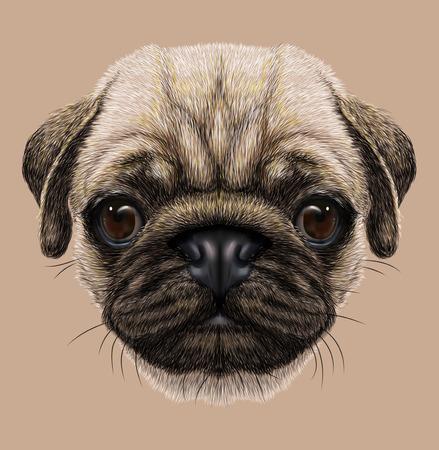 cute dog: Illustrative Portrait of Pug Dog. Cute young dog. Stock Photo