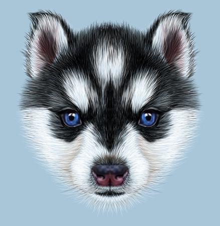 Illustratief Portret van een Husky Puppy. Schattige hoofd van bicolor puppy met blauwe ogen. Stockfoto