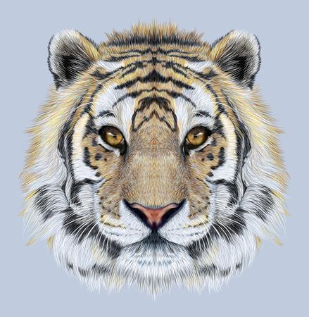 파란색 배경에 호랑이의 초상화. 큰 고양이의 아름 다운 얼굴.