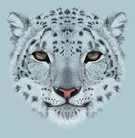 Illustrative Portrait of Snow Leopard.