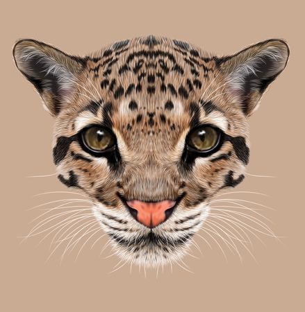 Illustrative Portrait of Clouded Leopard.
