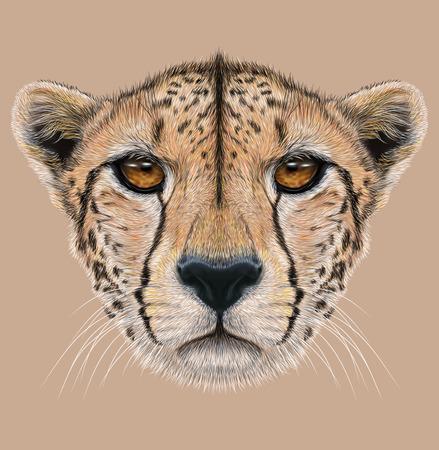 Illustratief Portret van een Cheetah. Het leuke gezicht van een Jachtluipaard.