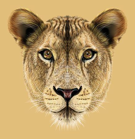 dessin noir et blanc: Portrait de lionne. Gros chat africain.
