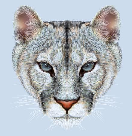 산 사자의 초상화입니다. Cuguar 고양이.