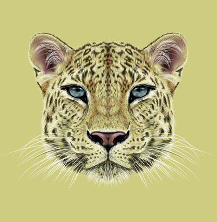 Illustrative Portrait of Leopard. Cute face of African Leopard with blue eyes.
