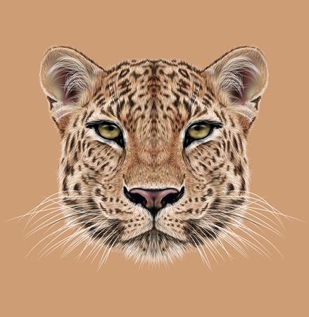 Illustrative Portrait of Leopard. Cute face of African Leopard.