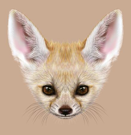 red head: Illustrative Portrait of Fennec Fox. Cute head of small Fox with big ears.
