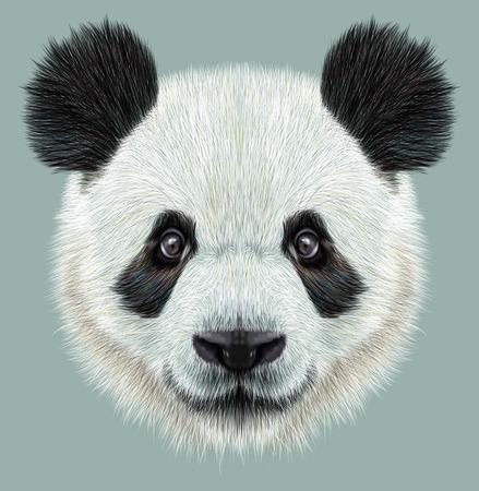Illustratief portret van Panda.Cute aantrekkelijk gezicht beren.