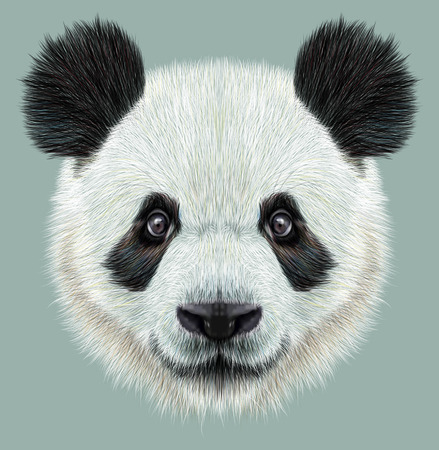 humour: Illustrative portrait of Panda.Cute attractive face bears.