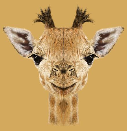 Illustratief portret van Giraffe.Cute aantrekkelijk gezicht van de jonge giraffe met hoorns. Stockfoto