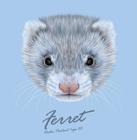 Vector Illustrative portrait of Ferret. Cute face of grey coloration of Ferret. Stock Illustratie