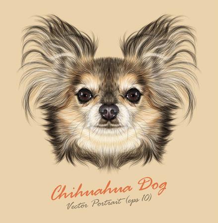 ベクトル イラスト肖像画のチワワ犬。黄色の背景に純粋な犬のかわいい肖像画  イラスト・ベクター素材