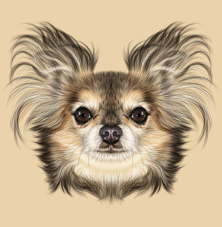 pure breed: Illustrative Portrait of Chihuahua dog. Cute Portrait of Pure Breed Dog on Yellow background