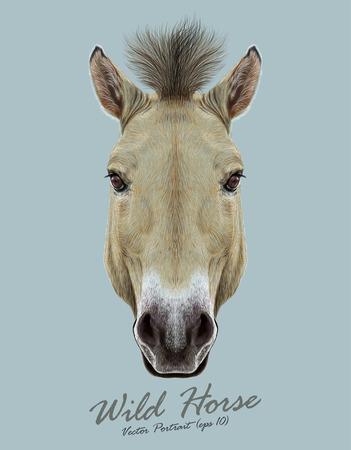 caballos negros: Pista del caballo de Przewalski. Caballo salvaje de Asia Central.