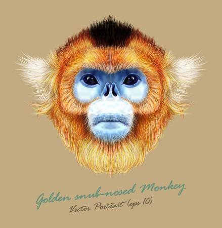 nariz: El Mokey linda salvaje del suroeste de China