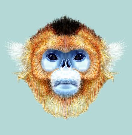 southwest asia: The wild cute mokey of Southwest China