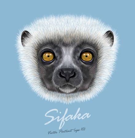 Cute face of Madagascars' lemur on Blue background.