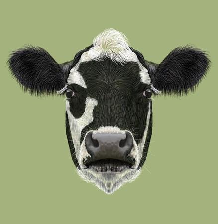 흑인과 백인 농장 동물 암소