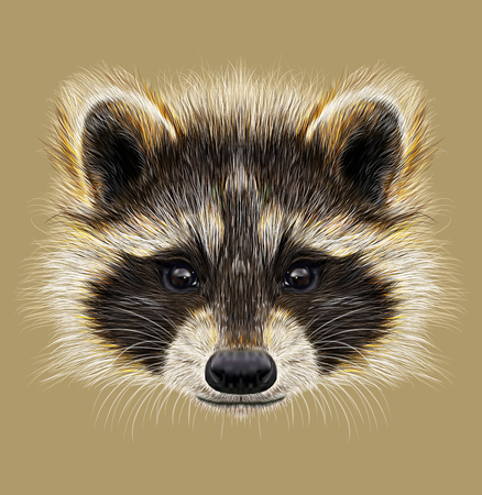 mammal: Forest common mammal of North America and Eurasia
