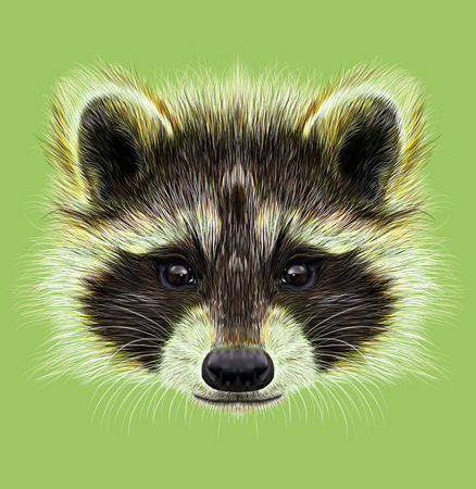 Forest common mammal of North America and Eurasia