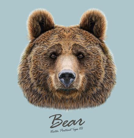 Big Bear van Noord-Amerika en Eurazië